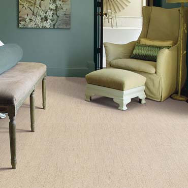 Caress Carpet by Shaw | Tappan, NY
